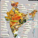 Indian Cuisine Map