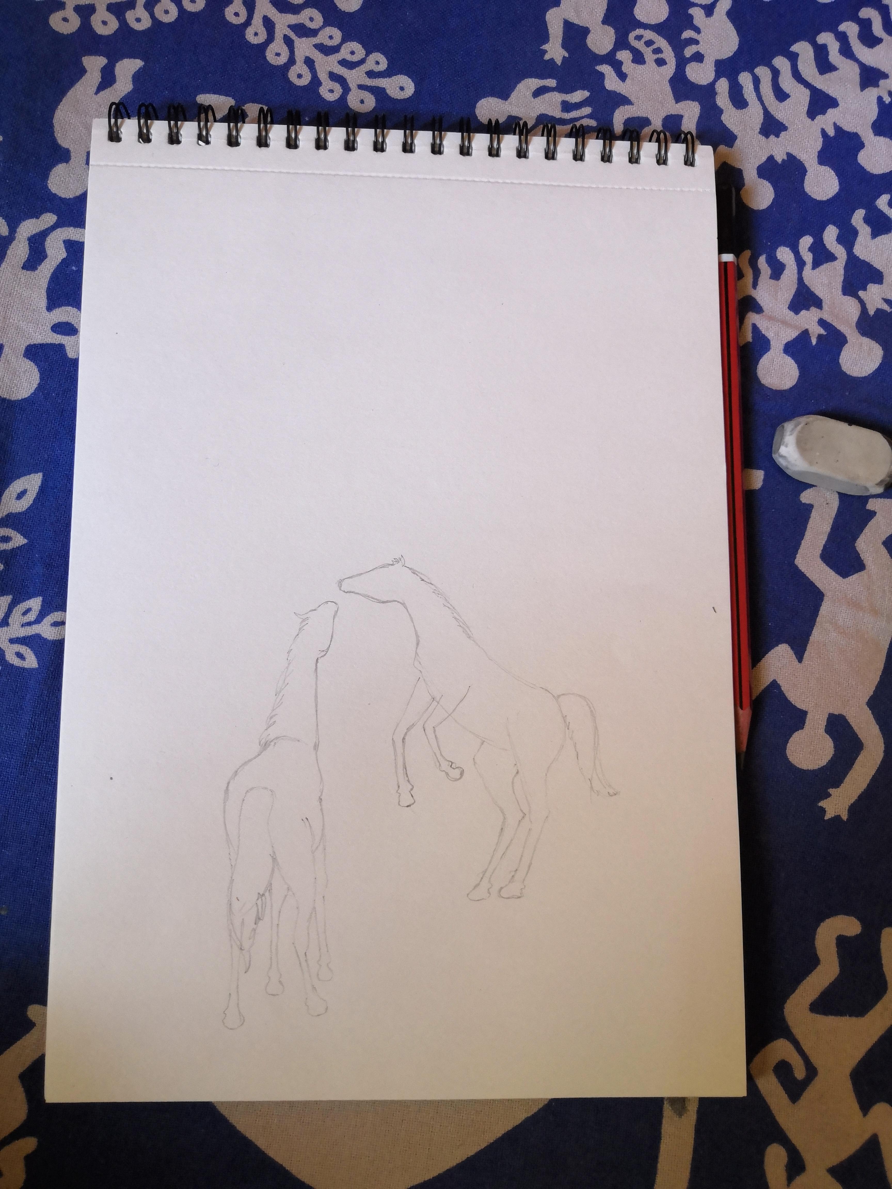 Horse Art Sketch